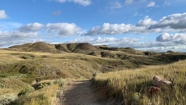 Paysage des prairies en septembre, à la fin de l'été, badlands à l'horizon sous un ciel bleu avec nuages.