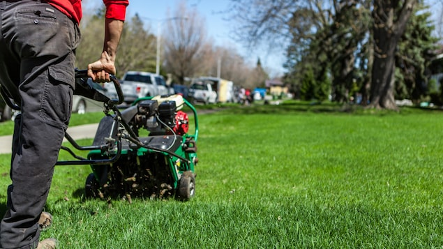 Un homme en train de pousser une machine pour aérer sa pelouse.