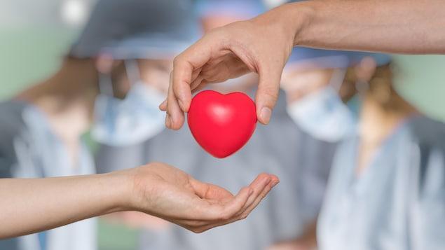 Un coeur devant des chirurgiens qui font une transplantation.