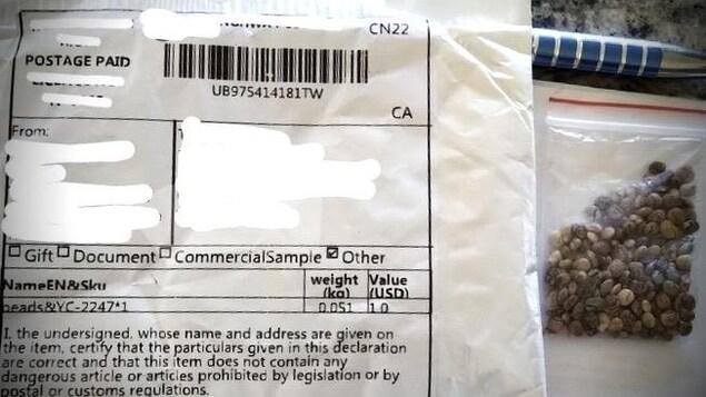 Un paquet contenant les graines.