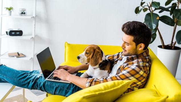 Un homme assis sur son divan avec un chien travaille à l'ordinateur.