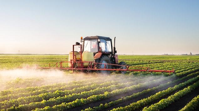 Un tracteur épand des pesticides dans un champ de soya.