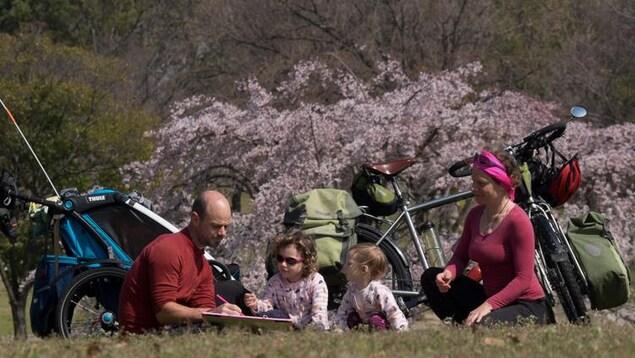 Xavier et Céline Pasche  et leurs deux enfants font de la lecture au pied de cerisiers au Japon.