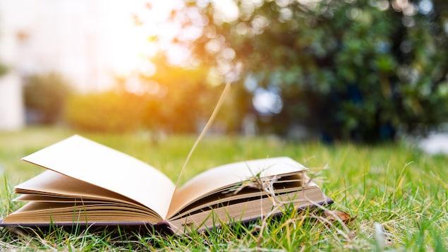 Un livre sur la pelouse.