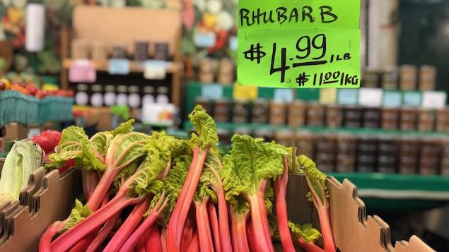 Un étalage de rhubarbe au marché St-Laurent de Toronto