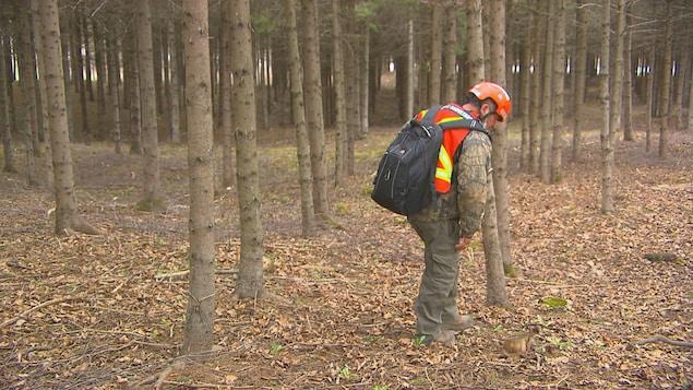Un bénévole membre de l'opération de recherche dans le boisé.