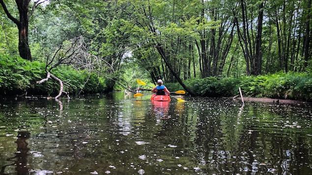 Des kayakistes sur la rivière aux Cerises