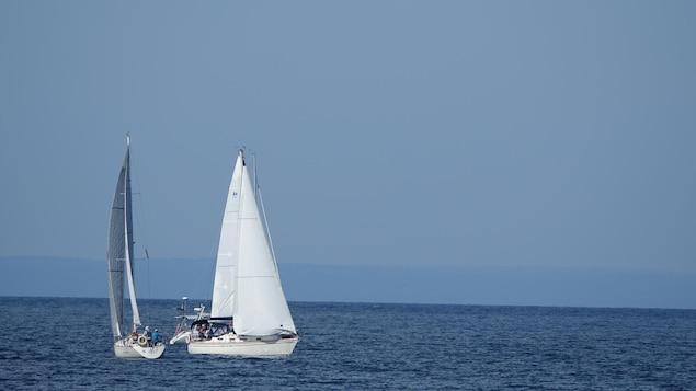 Trois voiliers sur un plan d'eau.