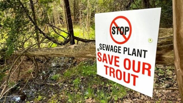 Une pancarte dans un bois demande la préservation des truites.