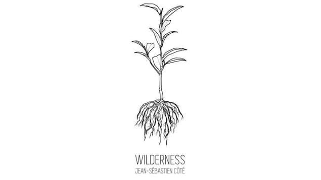 La pochette de l'album Wilderness présente une illustration d'une plante et de ses racines.