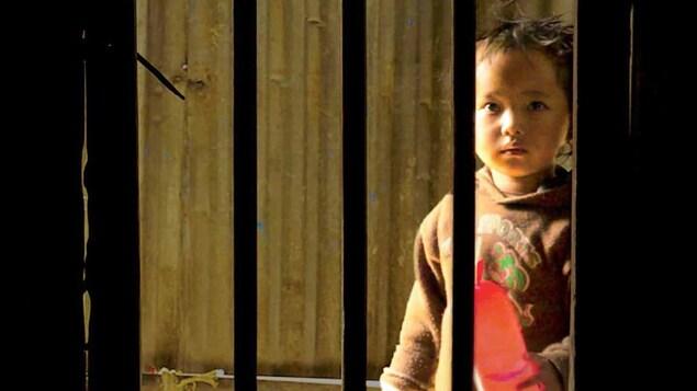 Un enfant regarde à travers des barreaux.