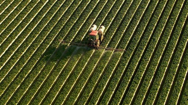 Vue aérienne d'un tracteur qui étend des pesticides dans un champ.