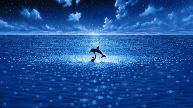 Un dauphin saute par-dessus un homme dans l'océan.