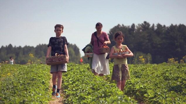 Deux enfants et une femme marchent dans un champ en transportant des paniers de fraises.