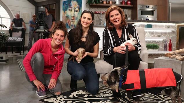 Les trois femmes sur le plateau en compagnie d'un cochon, d'un furet et d'un lapin.