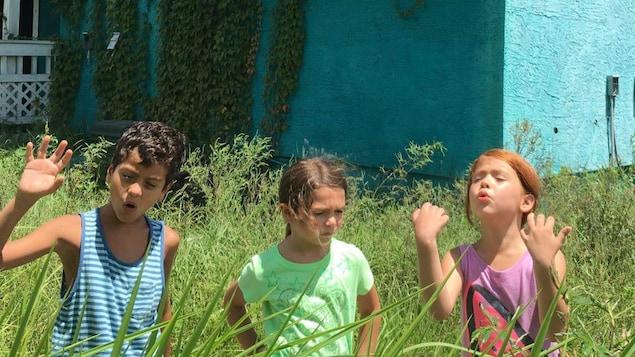 Trois enfants jouent au milieu d'herbes hautes.