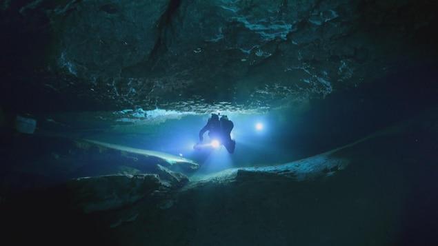Des explorateurs observent les effets du réchauffement climatique sur les écosystèmes de l'Arctique