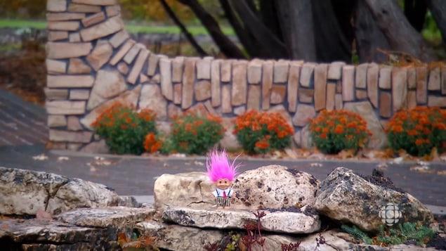 Un troll avec des cheveux roses est debout sur une roche dans un jardin. Il y a des fleurs dans l'arrière plan.