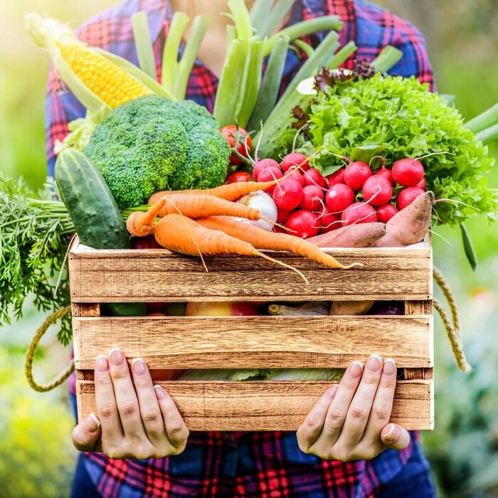 Une femme qui tient une caisse de légumes en bois, qui contient des carottes, du concombre, des radis, du brocoli, du maïs, des oignons verts et de la laitue.
