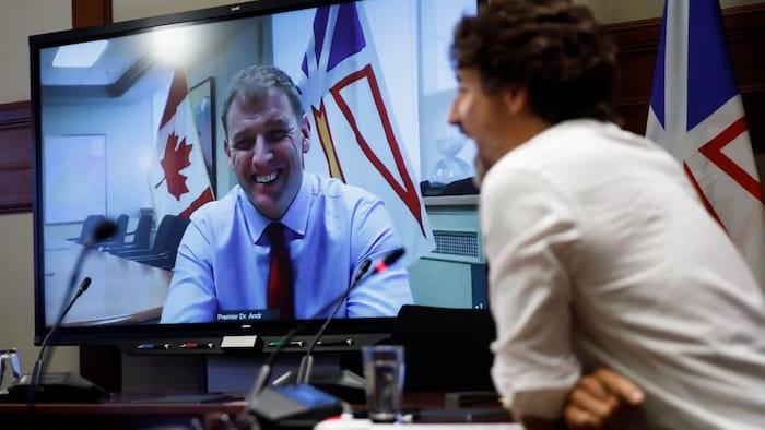 Newfoundland and Labrador Premier Andrew Furey and Prime Minister Justin Trudeau smile during a videoconference in September, 2020.