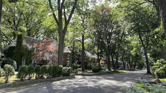 Une rue fermée, bordée d'arbres, avec de grandes et luxueuses maisons dans le quartier Lambton Mills de Toronto.