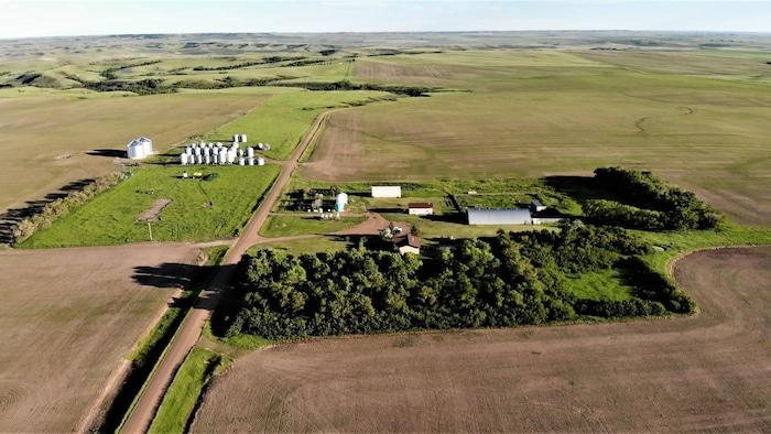 大付的農場。