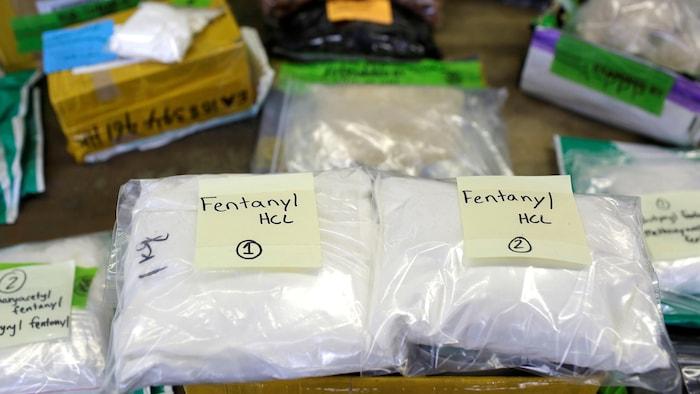 Sur une table, deux sacs remplis de poudre sont étiquetés « fentanyl ».