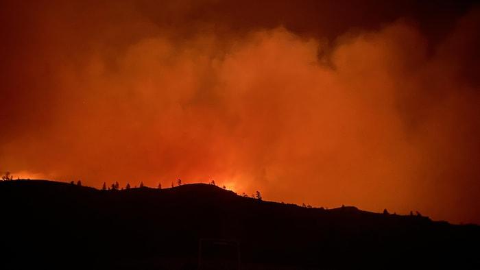 La nuit est rouge, à cause de flammes que l'on voit au loin, dans une forêt.