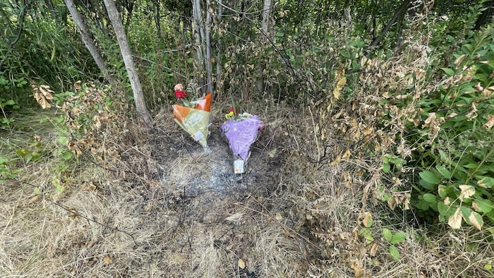 People have left flowers near the location where the woman's body was first found.