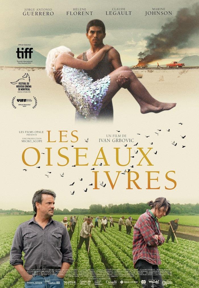 Affiche officielle du film Les Oiseaux Ivres.