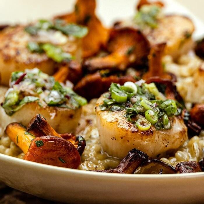 Orgetto aux champignons accompagné de pétoncles saisis avec une salsa d'oseille.