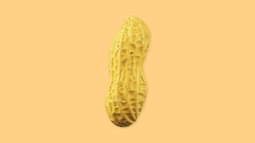 Arachide  - Ingrédients - Mordu