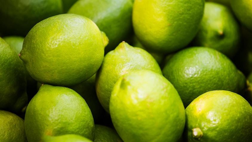 Zoom sur plusieurs limes.