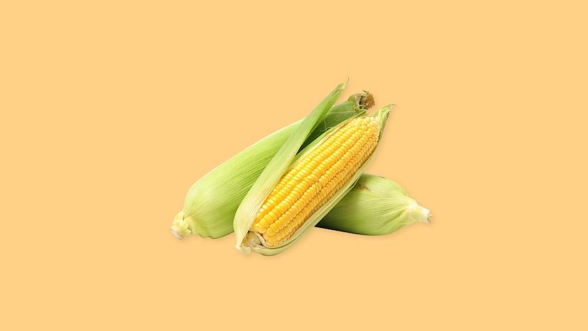 Trois épis de maïs, dont un qui est épluché.