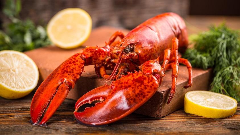 Un homard entier cuit sur une planche en bois.