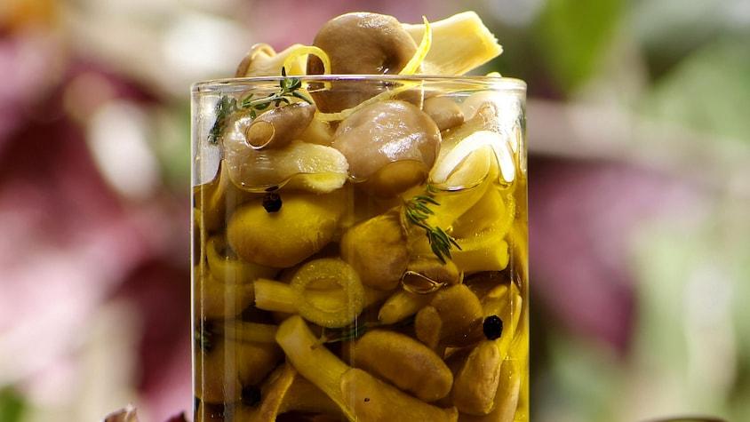 Pleurotes marinées à la provençale dans un bocal.