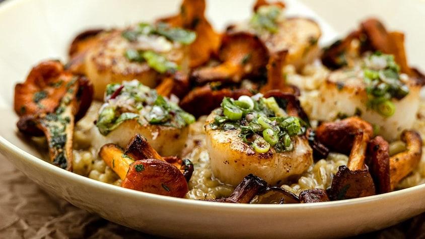 Orgetto aux champignons accompagné de pétoncles saisis dans une assiette.