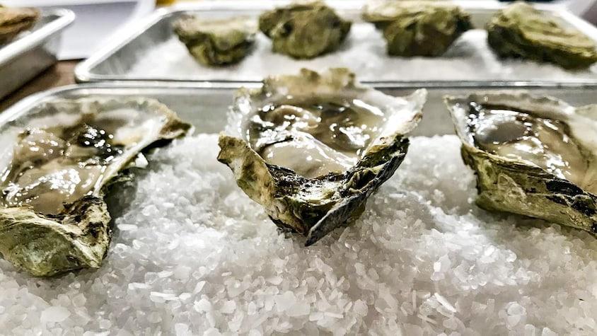 Trois huîtres disposées sur de la glace.