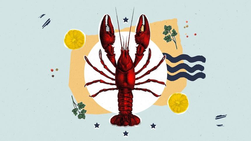 Illustration d'un homard placé dans une assiette avec un peu de persil et des tranches de citron.