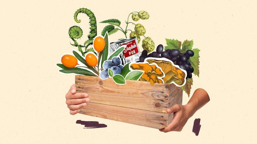 Des mains d'hommes tenant une boîte contenant des produits locaux.