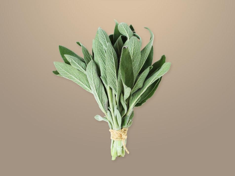 Un bouquet de feuilles de sauge.