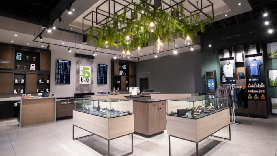 Un magasin avec des vitrine, des chandails accrochés au mur.