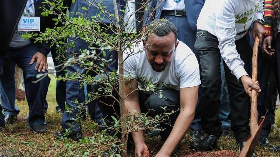 Le premier ministre éthiopien, accroupi, plante un arbre.