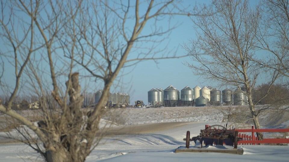 Au Québec, les producteurs agricoles possédaient en 2011 84 % des  terres qu'ils exploitaient.