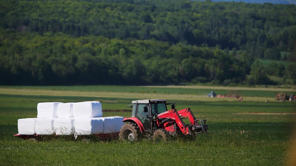 Un tracteur dans un champ.