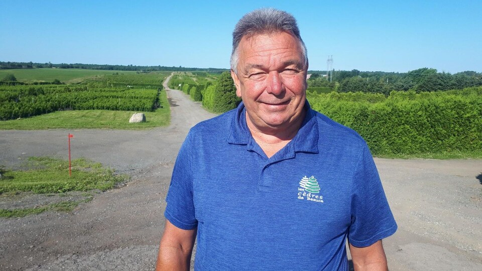 Alain Jacques pose devant des plantations de cèdre.