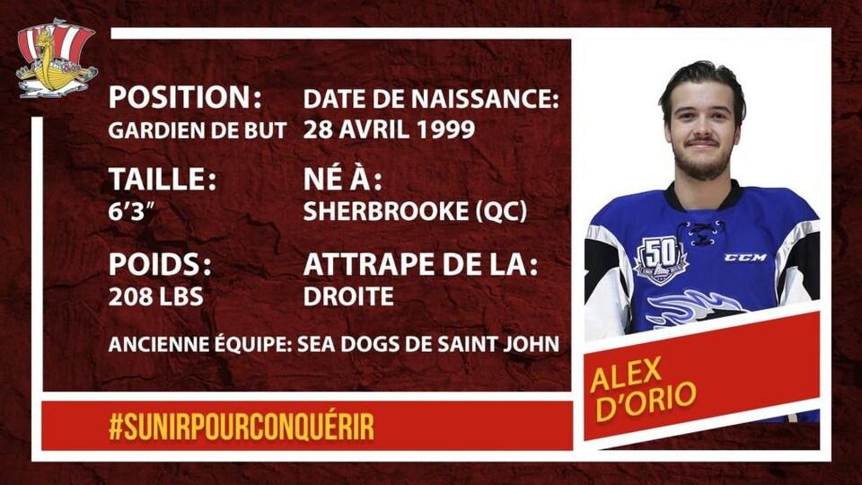 Fiche technique du gardien de but Alex D'Orio.