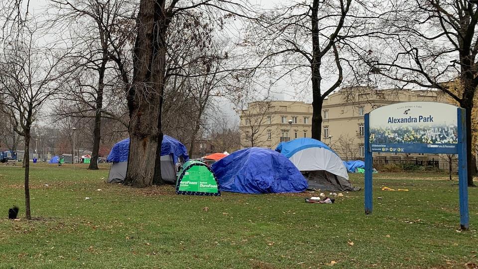 Des tentes installées à l'extérieur, près d'un arbre, sous un ciel gris.