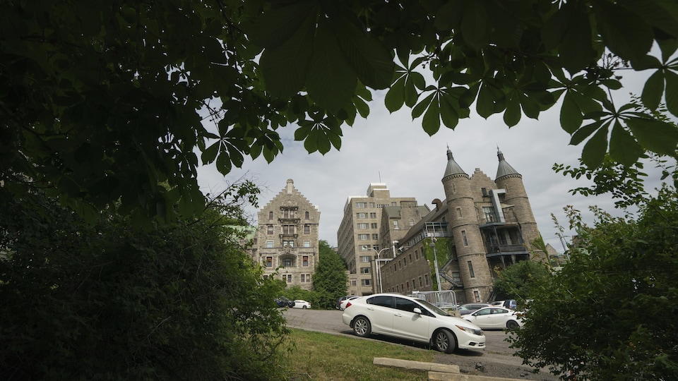 De vieux bâtiments vus à travers des arbres.