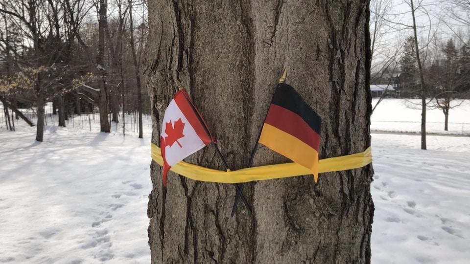 Les drapeaux canadien et belge accrochés sur un arbre à Rideau Hall.